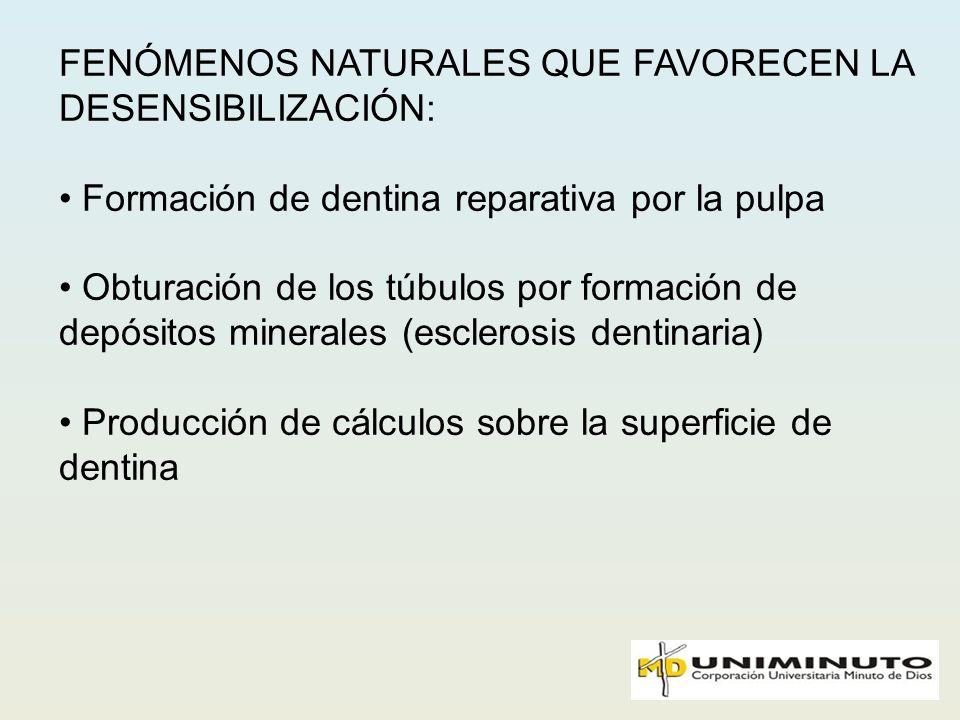 FENÓMENOS NATURALES QUE FAVORECEN LA DESENSIBILIZACIÓN: Formación de dentina reparativa por la pulpa Obturación de los túbulos por formación de depósi