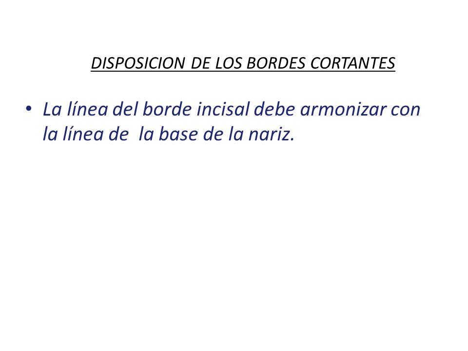 DISPOSICION DE LOS BORDES CORTANTES La línea del borde incisal debe armonizar con la línea de la base de la nariz.