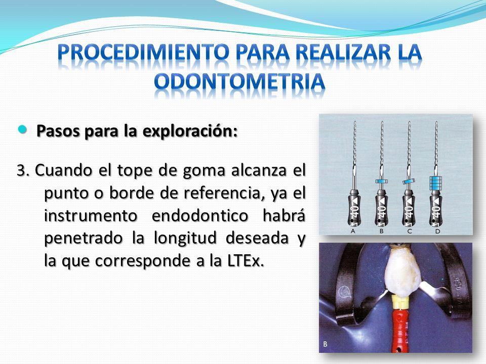 Pasos para la exploración: Pasos para la exploración: 3. Cuando el tope de goma alcanza el punto o borde de referencia, ya el instrumento endodontico