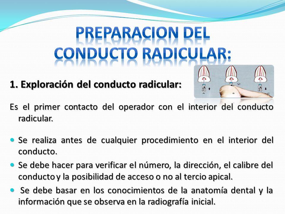 1. Exploración del conducto radicular: Es el primer contacto del operador con el interior del conducto radicular. Se realiza antes de cualquier proced