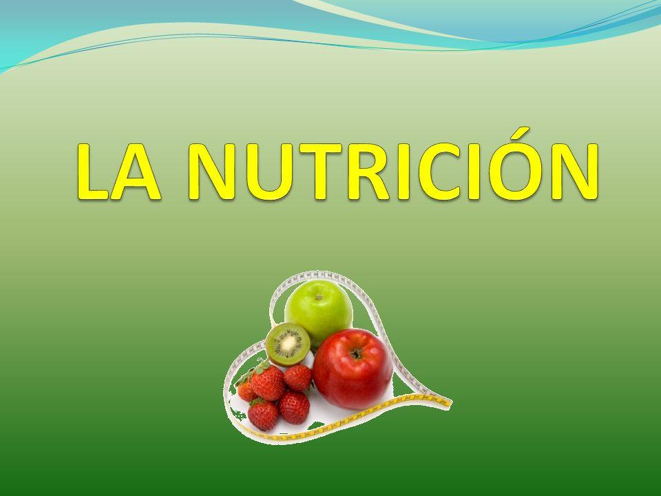 NUTRICIÓN ALIMENTACIÓN Todos los alimentos no pueden ser utilizados directamente, por lo que deben ser transformados en sustancias más sencillas llamadas nutrientes.