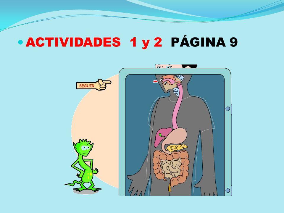 ACTIVIDADES 1 y 2 PÁGINA 9