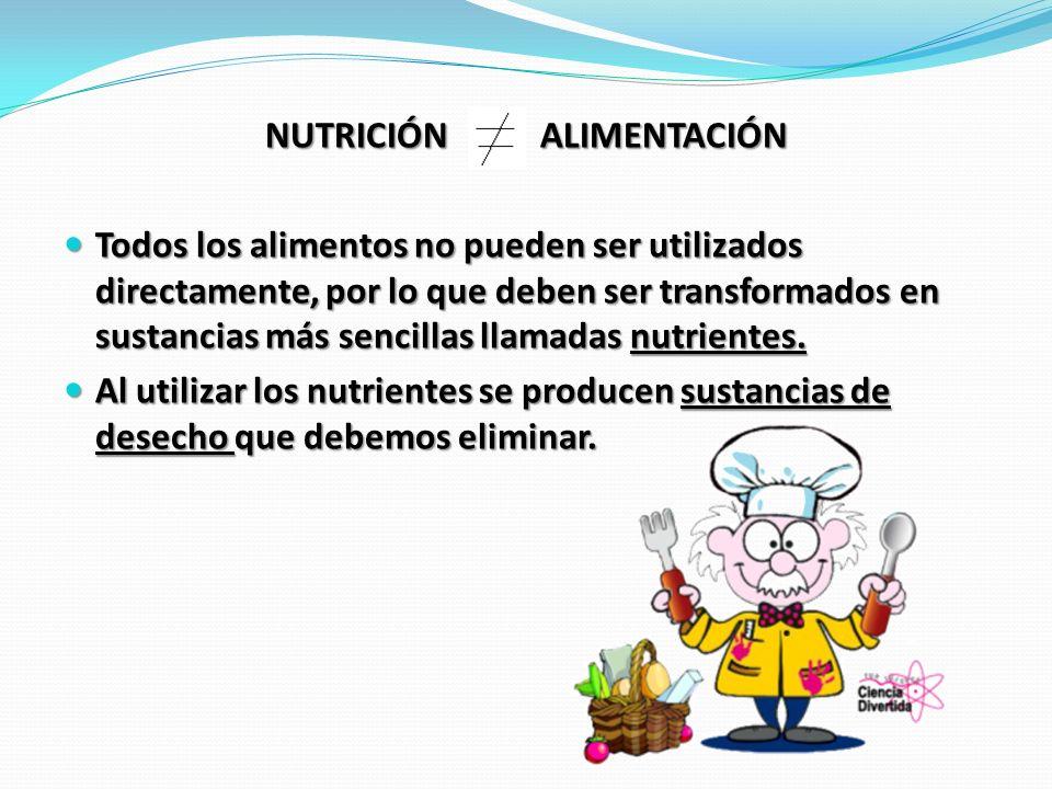 NUTRICIÓN ALIMENTACIÓN Todos los alimentos no pueden ser utilizados directamente, por lo que deben ser transformados en sustancias más sencillas llama