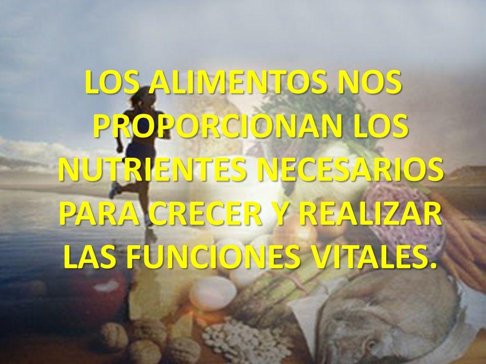 LOS NUTRIENTES El cuerpo los utiliza para fabricar sus propios materiales y para obtener energía Con esos materiales nuestro cuerpo repara los órganos dañados y crecemos.