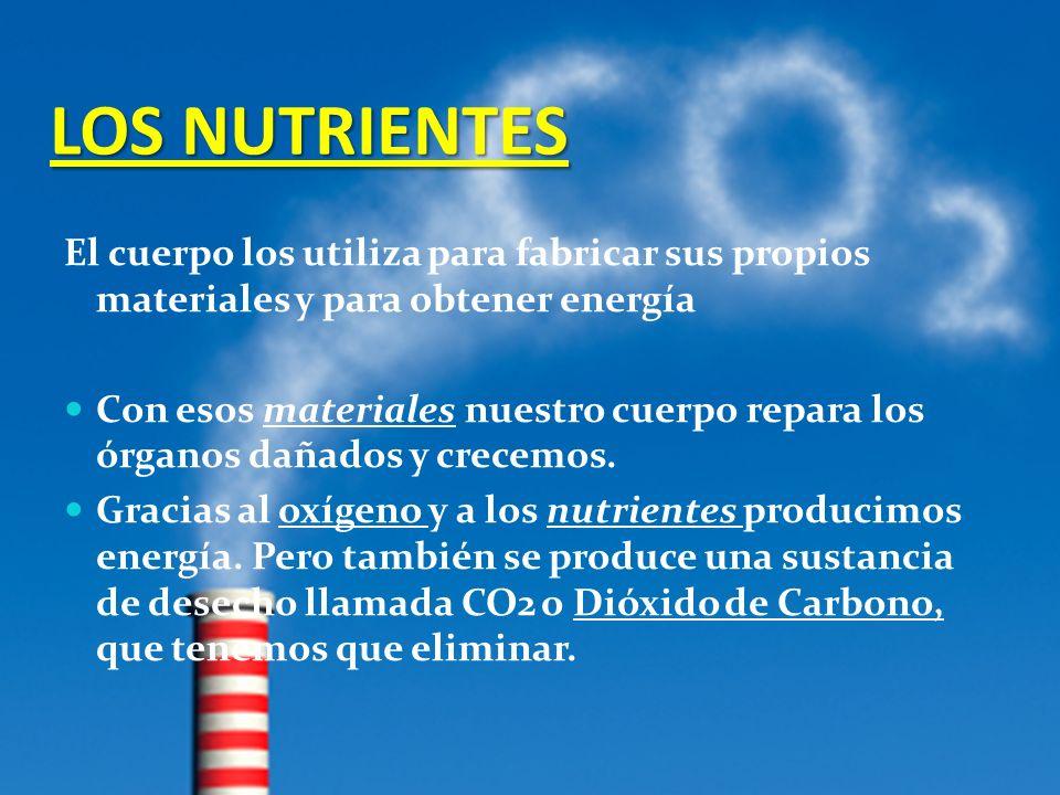 LOS NUTRIENTES El cuerpo los utiliza para fabricar sus propios materiales y para obtener energía Con esos materiales nuestro cuerpo repara los órganos