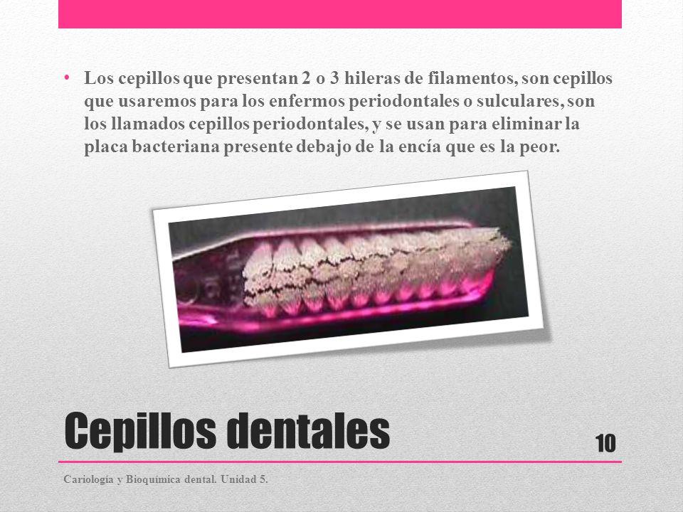 Cepillos dentales Los cepillos que presentan 2 o 3 hileras de filamentos, son cepillos que usaremos para los enfermos periodontales o sulculares, son