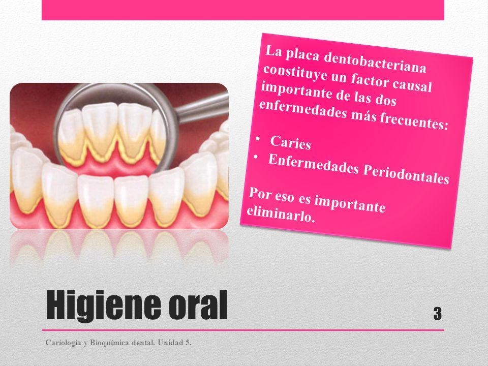 Higiene oral La placa dentobacteriana constituye un factor causal importante de las dos enfermedades más frecuentes: Caries Enfermedades Periodontales