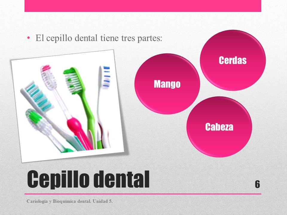 Cepillo dental El cepillo dental tiene tres partes: Mango Cabeza Cerdas Cariología y Bioquímica dental. Unidad 5. 6