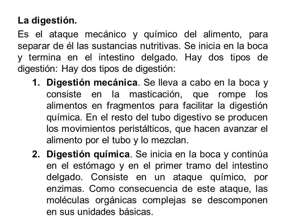 La digestión. Es el ataque mecánico y químico del alimento, para separar de él las sustancias nutritivas. Se inicia en la boca y termina en el intesti