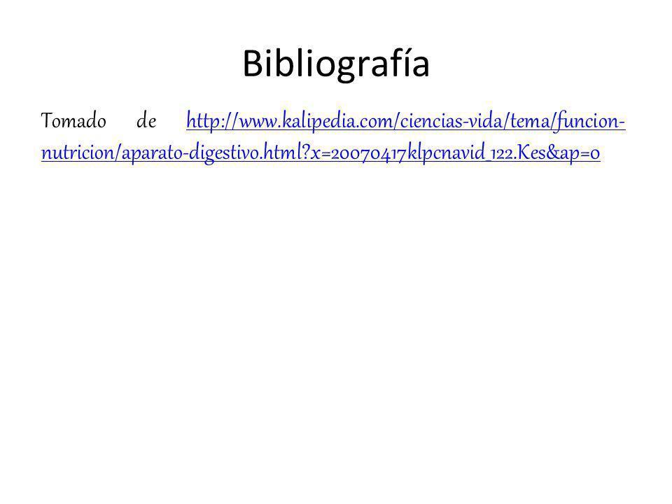 Bibliografía Tomado de http://www.kalipedia.com/ciencias-vida/tema/funcion- nutricion/aparato-digestivo.html?x=20070417klpcnavid_122.Kes&ap=0http://ww