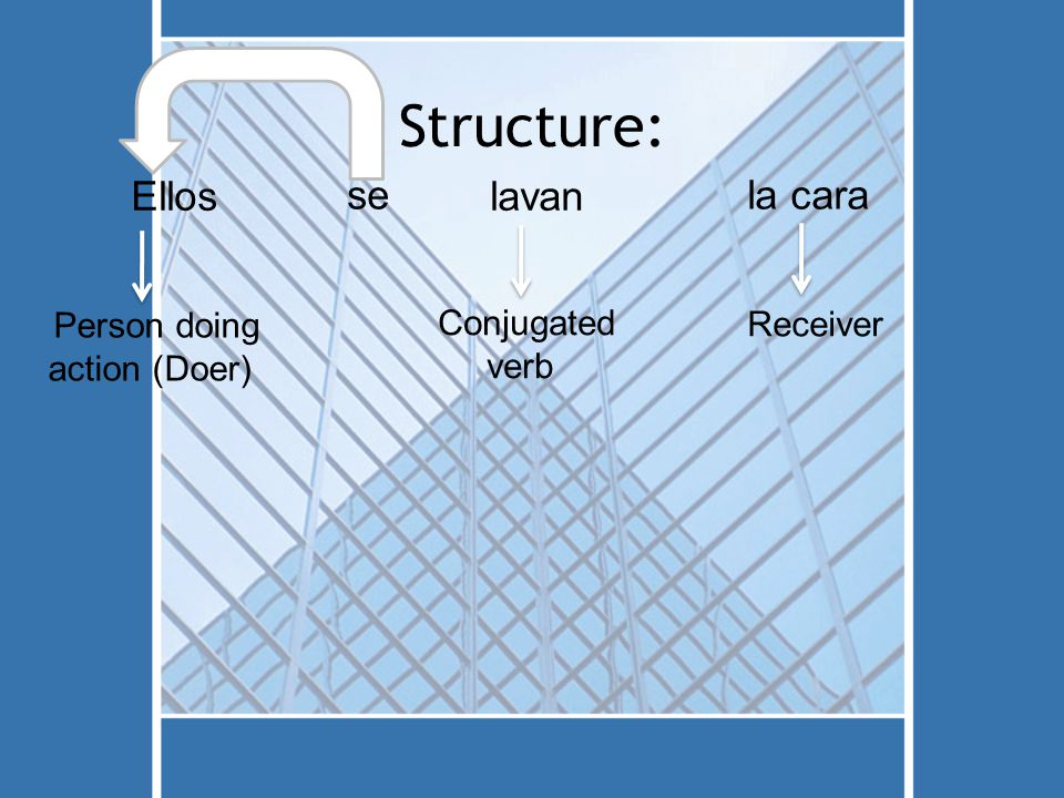 Structure: Ellos Person doing action (Doer) se lavan Conjugated verb la cara Receiver