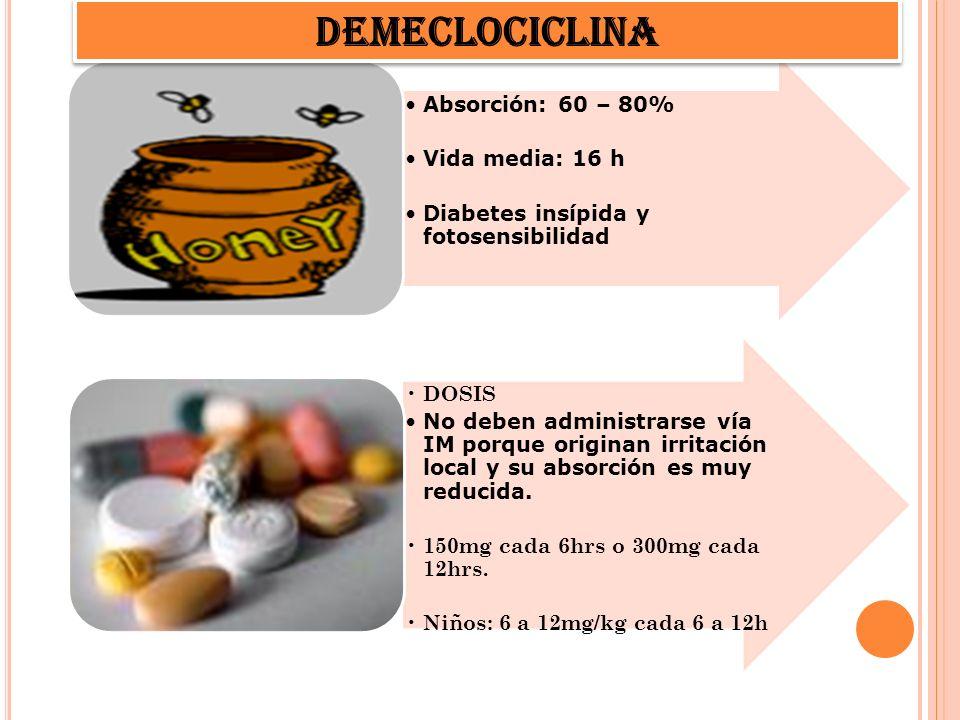 Absorción: 60 – 80% Vida media: 16 h Diabetes insípida y fotosensibilidad DOSIS No deben administrarse vía IM porque originan irritación local y su ab