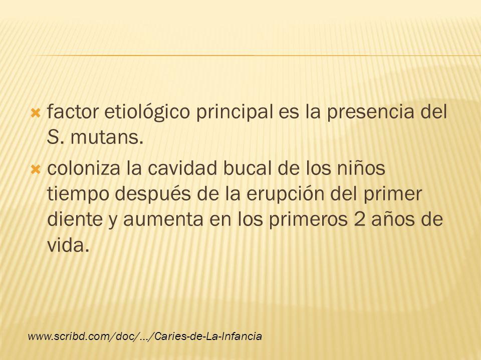 LA ACADEMIA AMERICANA DE ODONTOLOGÍA PEDIÁTRICA Nomenclatura para un patrón particular de caries dental en niños pequeños.