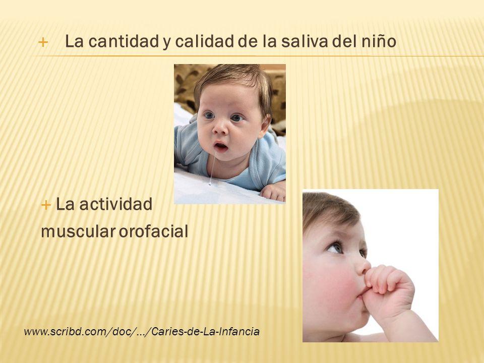 Proporcionar al niño alimentos o sustancias que contengan un pH bajo Nivel socioeconómico www.scribd.com/doc/.../Caries-de-La-Infancia