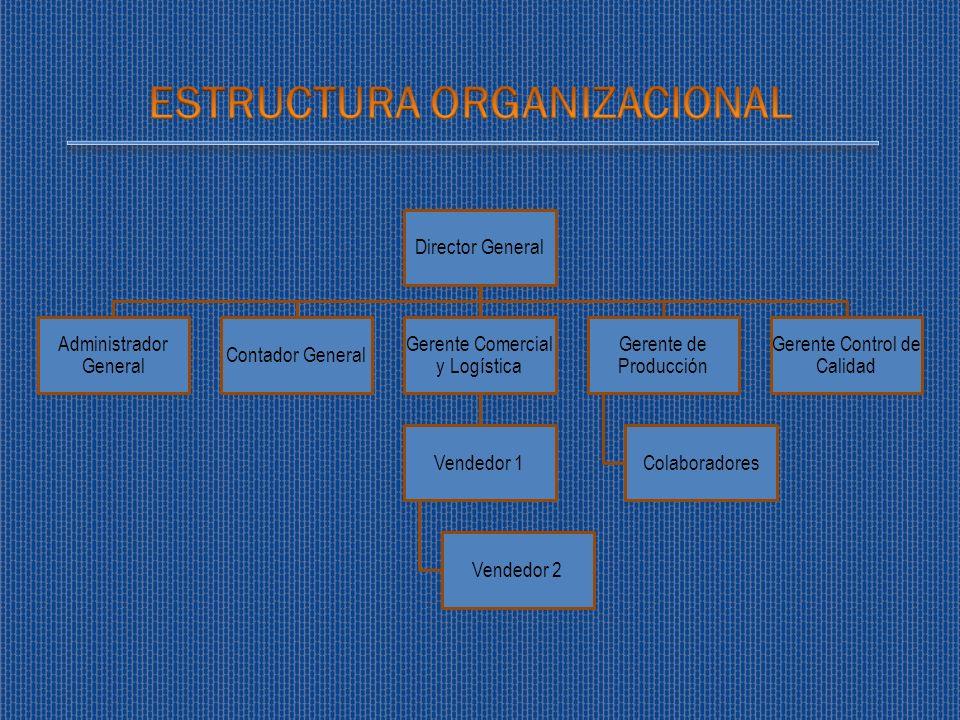Director General Administrador General Contador General Gerente Comercial y Logística Vendedor 1 Vendedor 2 Gerente de Producción Colaboradores Gerent