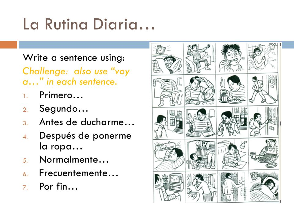 La Rutina Diaria… Write a sentence using: Challenge: also use voy a… in each sentence. 1. Primero… 2. Segundo… 3. Antes de ducharme… 4. Después de pon