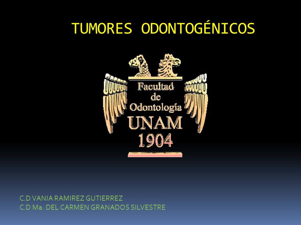 TUMORES ODONTOGÉNICOS C.D VANIA RAMIREZ GUTIERREZ C.D Ma. DEL CARMEN GRANADOS SILVESTRE