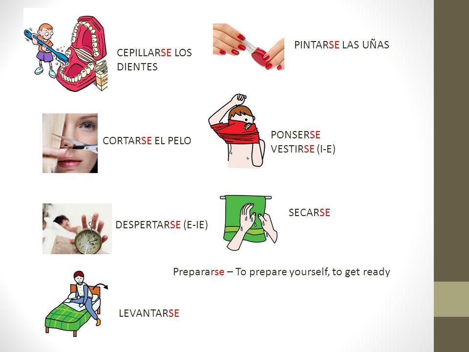 Prepararse – To prepare yourself, to get ready CEPILLARSE LOS DIENTES PINTARSE LAS UÑAS CORTARSE EL PELO PONSERSE VESTIRSE (I-E) DESPERTARSE (E-IE) SE