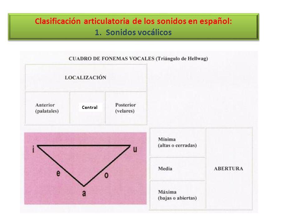 RASGOÓRGANOS INTERVIENENEJEMPLOS BilabialLos dos labios/p/, /b/, /m/ LabiodentalLabio inferior y dientes superiores/f/ InterdentalLengua entre los dientes/z/ DentalLengua detrás de los dientes superiores /t/, /d/ AlveolarLengua sobre la raíz dientes superiores /s/,/l/,/r/,/rr/,/n/ PalatalLengua y paladar/ch/,/y/,/ll/,/ñ/ VelarLengua y velo del paladar/k/,/g/,/x/ 3.4.