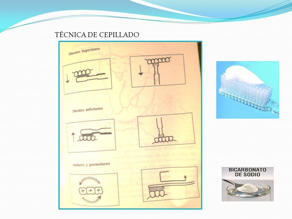TÉCNICA DE CEPILLADO