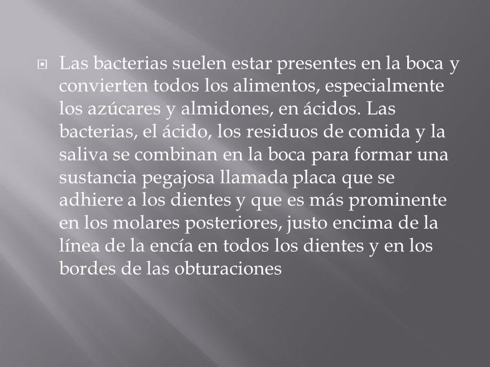 Las bacterias suelen estar presentes en la boca y convierten todos los alimentos, especialmente los azúcares y almidones, en ácidos. Las bacterias, el