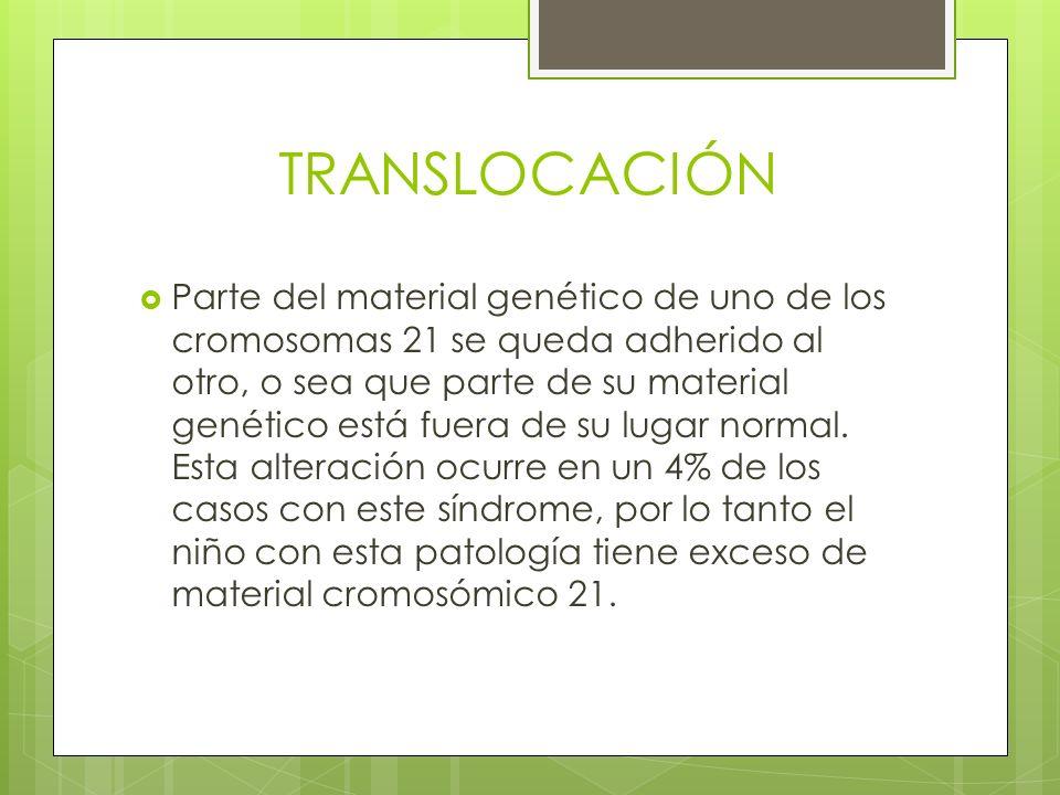 TRANSLOCACIÓN Parte del material genético de uno de los cromosomas 21 se queda adherido al otro, o sea que parte de su material genético está fuera de
