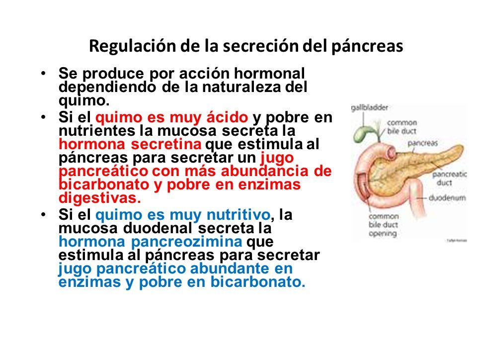 Regulación de la secreción del páncreas Se produce por acción hormonal dependiendo de la naturaleza del quimo. Si el quimo es muy ácido y pobre en nut