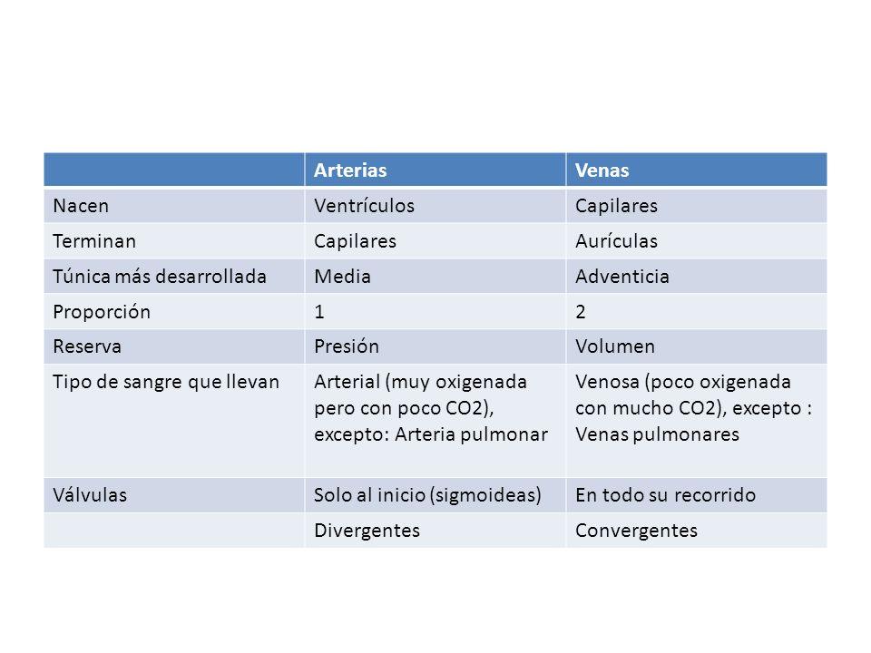 ArteriasVenas NacenVentrículosCapilares TerminanCapilaresAurículas Túnica más desarrolladaMediaAdventicia Proporción12 ReservaPresiónVolumen Tipo de s