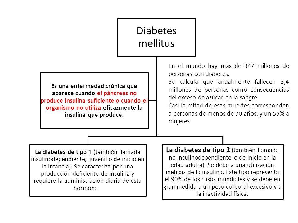 Diabetes mellitus La diabetes de tipo 1 (también llamada insulinodependiente, juvenil o de inicio en la infancia). Se caracteriza por una producción d