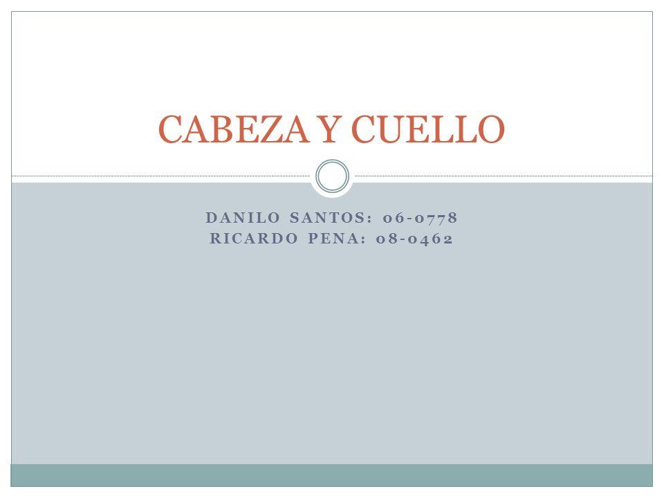 DANILO SANTOS: 06-0778 RICARDO PENA: 08-0462 CABEZA Y CUELLO