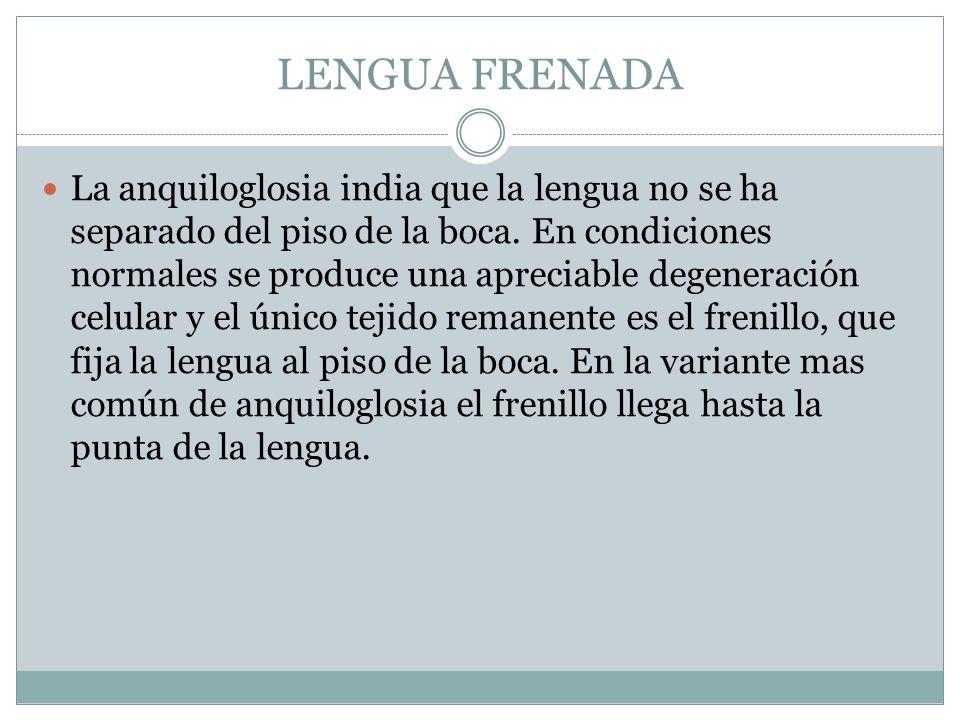 LENGUA FRENADA La anquiloglosia india que la lengua no se ha separado del piso de la boca. En condiciones normales se produce una apreciable degenerac