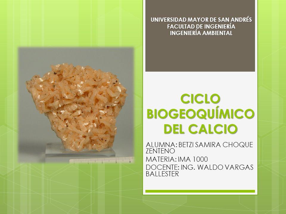 ELEMENTO CALCIO CICLO BIOGEOQUÍMICO DEL CALCIO En su estado natural el elemento calcio no reacciona con agua Es el quinto elemento mas abundante en la corteza terrestres