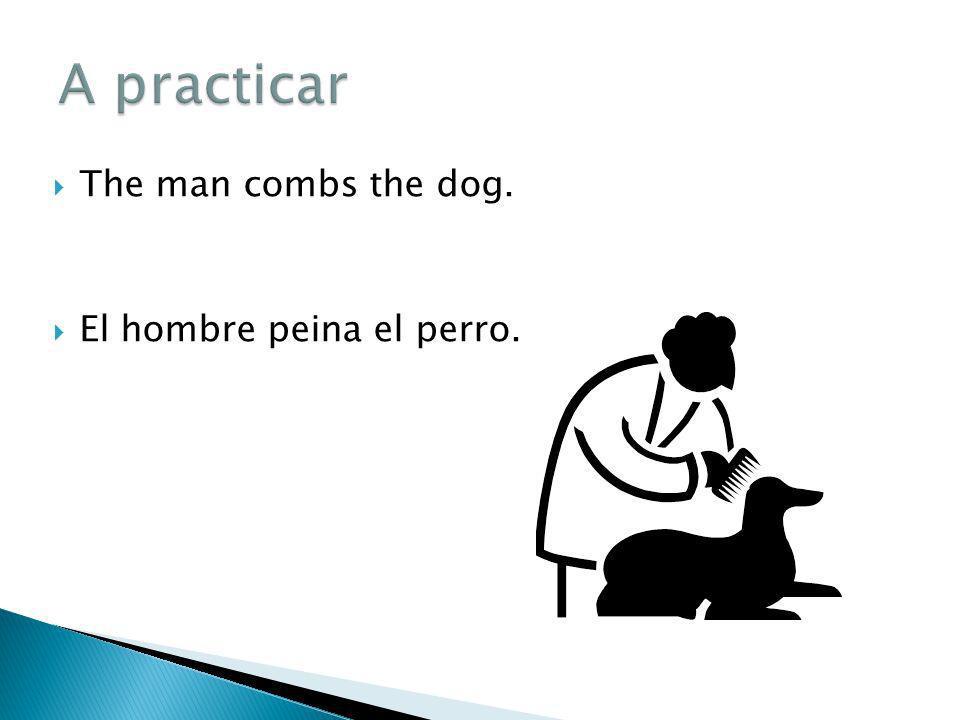The man combs the dog. El hombre peina el perro.