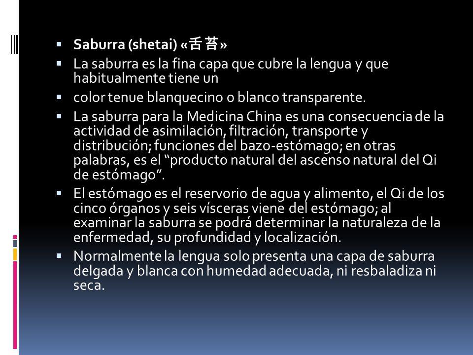 Saburra (shetai) « » La saburra es la fina capa que cubre la lengua y que habitualmente tiene un color tenue blanquecino o blanco transparente.
