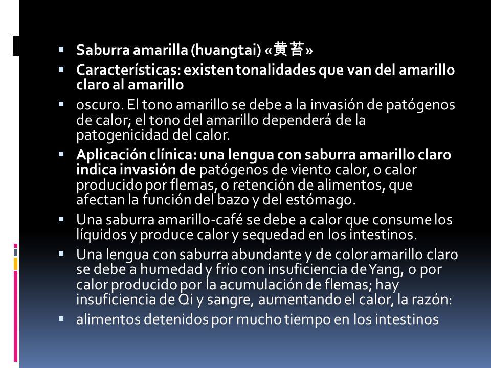 Saburra amarilla (huangtai) « » Características: existen tonalidades que van del amarillo claro al amarillo oscuro.