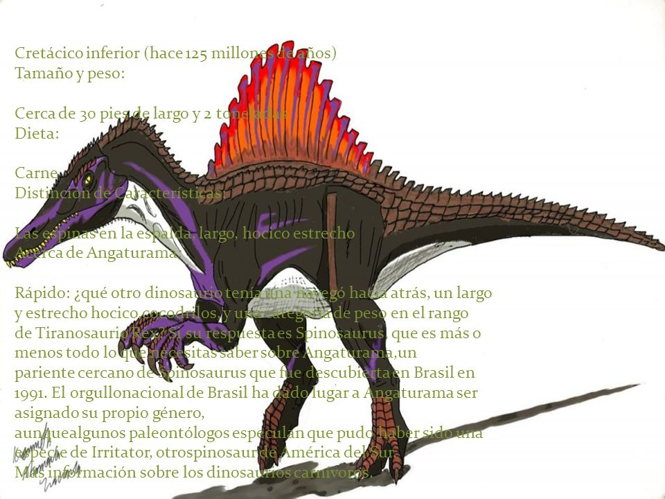 Cretácico inferior (hace 125 millones de años) Tamaño y peso: Cerca de 30 pies de largo y 2 toneladas Dieta: Carne Distinción de Características: Las