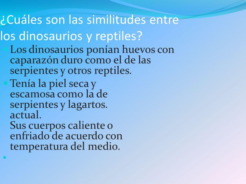 ¿Cuáles son las similitudes entre los dinosaurios y reptiles? Los dinosaurios ponían huevos con caparazón duro como el de las serpientes y otros repti