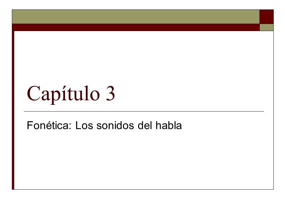 Las vocales El inventario vocálico en español: /a e i o u/(5 fonemas) El triángulo vocálico de español: ALTA [i] [u] MEDIA [e][o] BAJA [a] ANTERIOR CENTRALPOSTERIOR