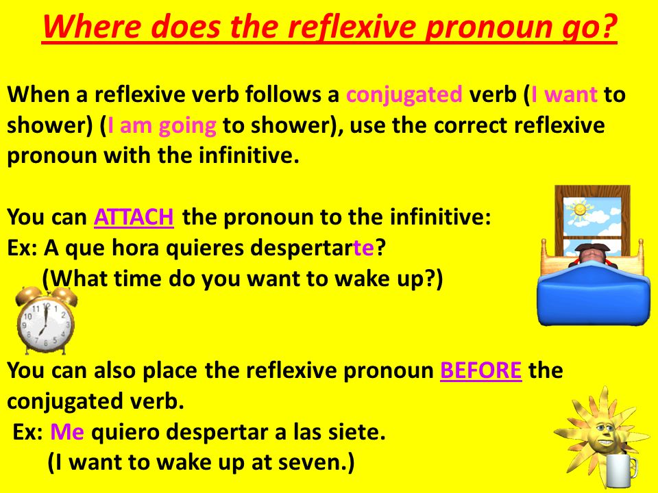 Where does the reflexive pronoun go? When a reflexive verb follows a conjugated verb (I want to shower) (I am going to shower), use the correct reflex