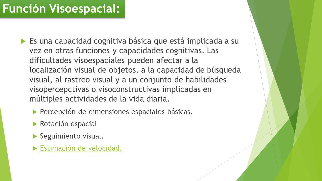 Es una capacidad cognitiva básica que está implicada a su vez en otras funciones y capacidades cognitivas. Las dificultades visoespaciales pueden afec