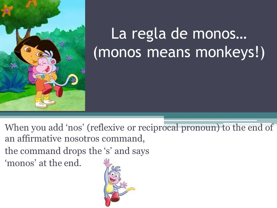 La regla de monos… (monos means monkeys!) When you add nos (reflexive or reciprocal pronoun) to the end of an affirmative nosotros command, the command drops the s and says monos at the end.