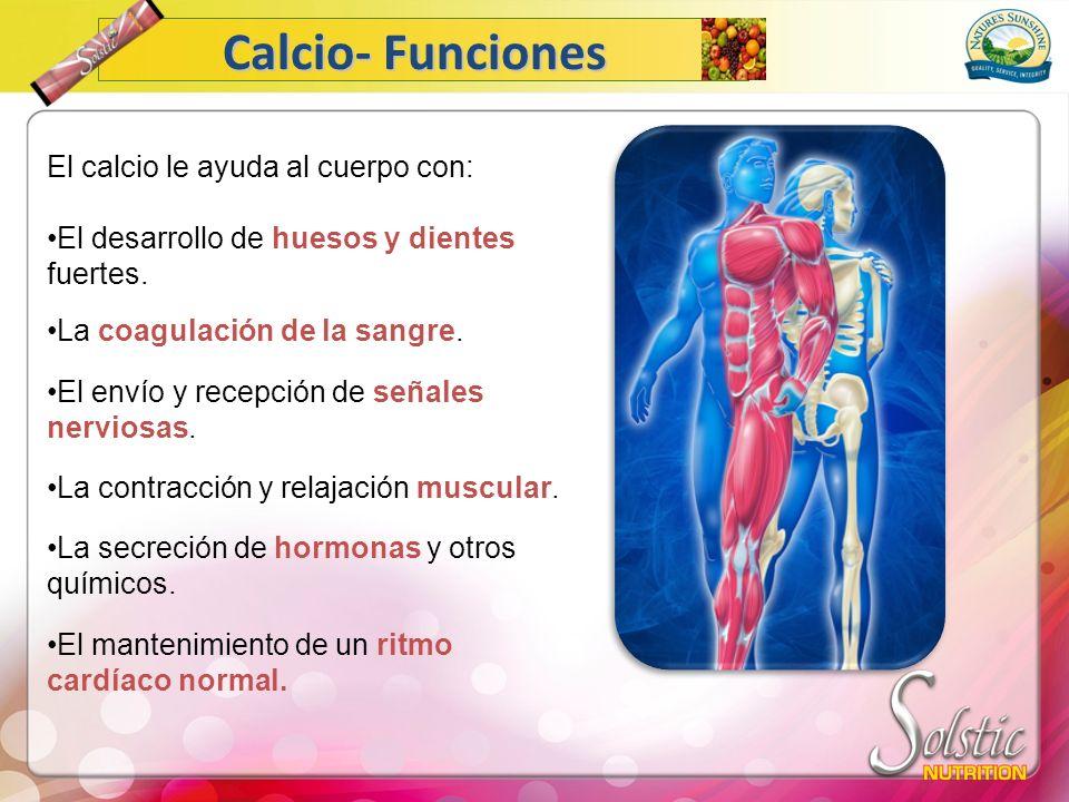 El calcio le ayuda al cuerpo con: El desarrollo de huesos y dientes fuertes. La coagulación de la sangre. El envío y recepción de señales nerviosas. L
