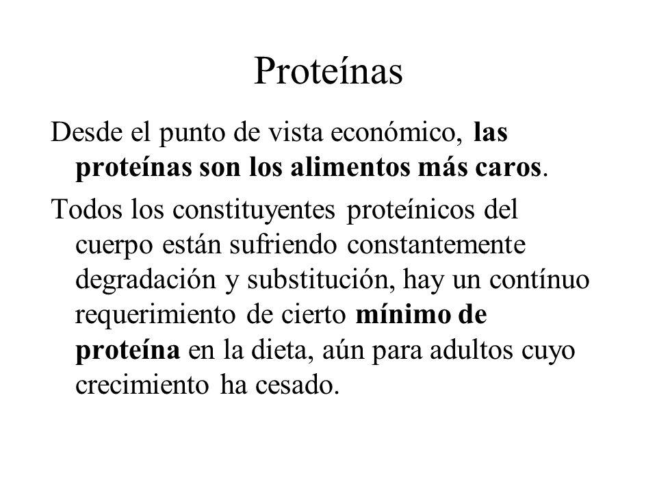 Proteínas Desde el punto de vista económico, las proteínas son los alimentos más caros. Todos los constituyentes proteínicos del cuerpo están sufriend