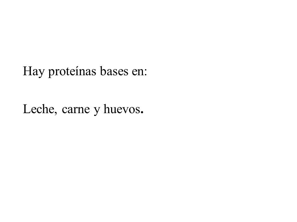 Hay proteínas bases en: Leche, carne y huevos.