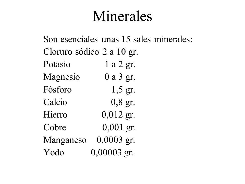 Minerales Son esenciales unas 15 sales minerales: Cloruro sódico 2 a 10 gr. Potasio 1 a 2 gr. Magnesio 0 a 3 gr. Fósforo 1,5 gr. Calcio 0,8 gr. Hierro