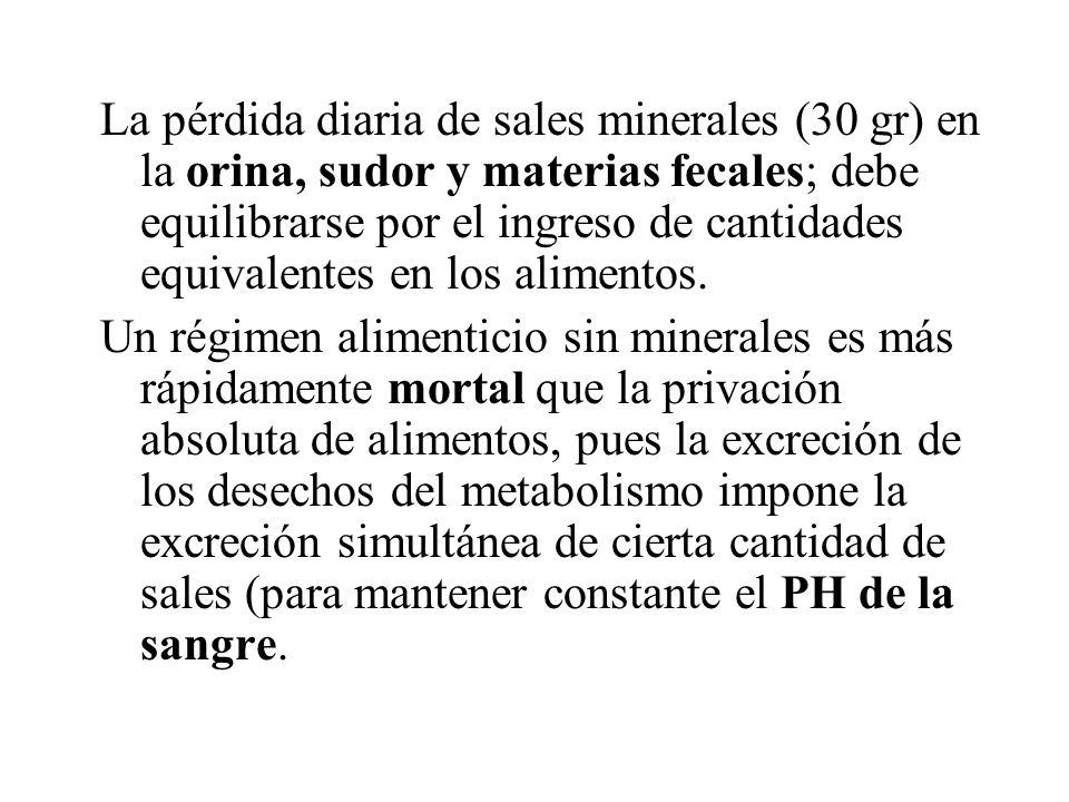 La pérdida diaria de sales minerales (30 gr) en la orina, sudor y materias fecales; debe equilibrarse por el ingreso de cantidades equivalentes en los