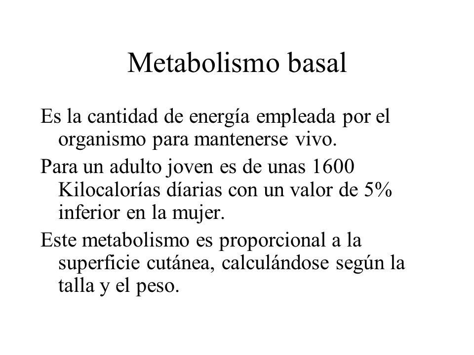 Metabolismo basal Es la cantidad de energía empleada por el organismo para mantenerse vivo. Para un adulto joven es de unas 1600 Kilocalorías díarias