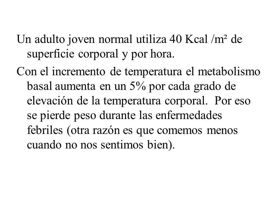 Un adulto joven normal utiliza 40 Kcal /m² de superficie corporal y por hora. Con el incremento de temperatura el metabolismo basal aumenta en un 5% p