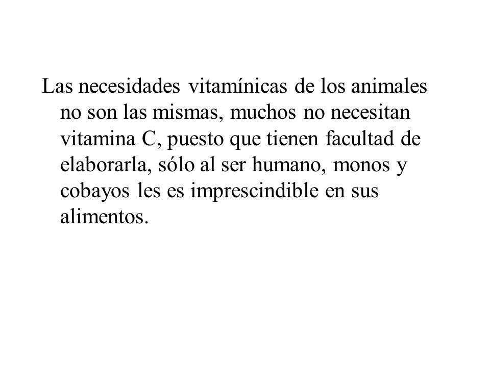 Las necesidades vitamínicas de los animales no son las mismas, muchos no necesitan vitamina C, puesto que tienen facultad de elaborarla, sólo al ser h