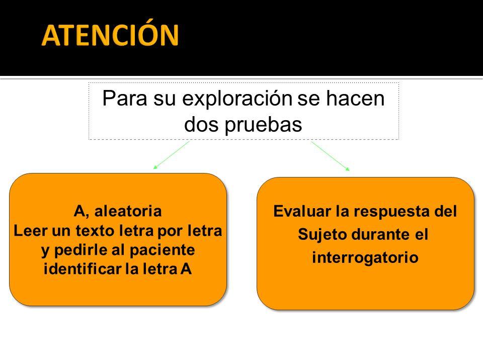 APRENDIZAJE ALMACENAMIENTO RECUERDO Recepción y registro sensorial de la información Codificación y procesos de consolidación y olvidos Evocación y reconocimiento
